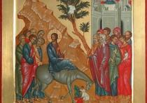 Вербное воскресенье: о смысле праздника рассказал Андрей Кураев