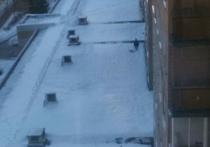 Жительницу Подмосковья застукали за выгулом собаки на крыше магазина