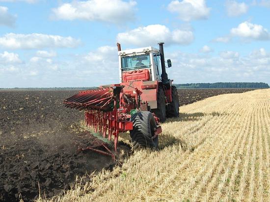 Ингушетия занимает первое место в стране по урожайности клубней картофеля
