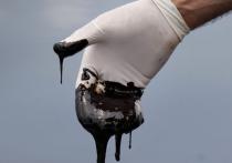 Перед нефтью не надышишься